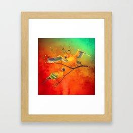 Parrots Sun Conures Framed Art Print