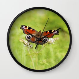 The European peacock butterfly Wall Clock