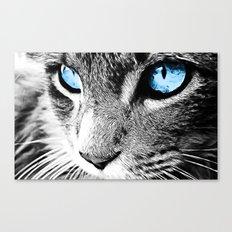 Kitty Blue Eyes Canvas Print