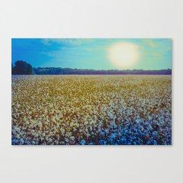 Rising Cotton Canvas Print