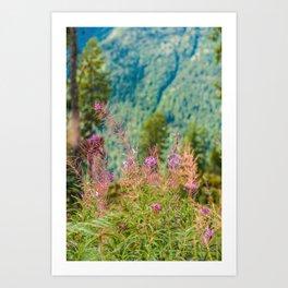 Wildflowers so High - British Columbia  Art Print
