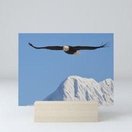 Bird's Eye View! Mini Art Print