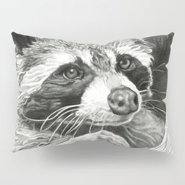 Raccoon In A Hollow Tree Drawing Pillow Sham