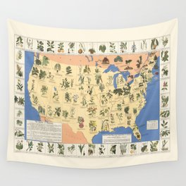 Medicinal Plants map of US Wall Tapestry