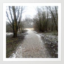Bare Path  Art Print