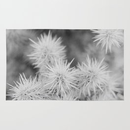 Cactus Detail Rug