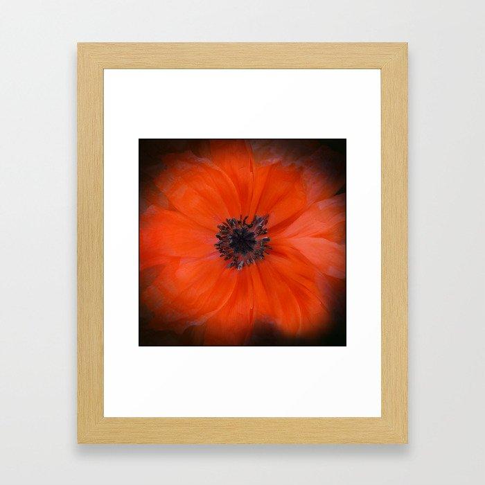 Poppy Square Framed Art Print