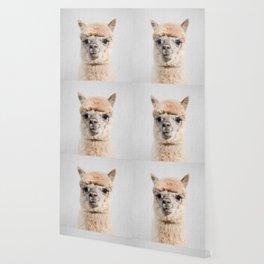 Alpaca - Colorful Wallpaper