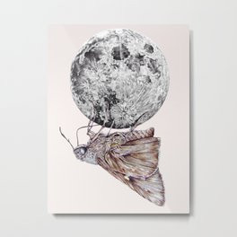 In which a moth is enticed by the light of the moon Metal Print