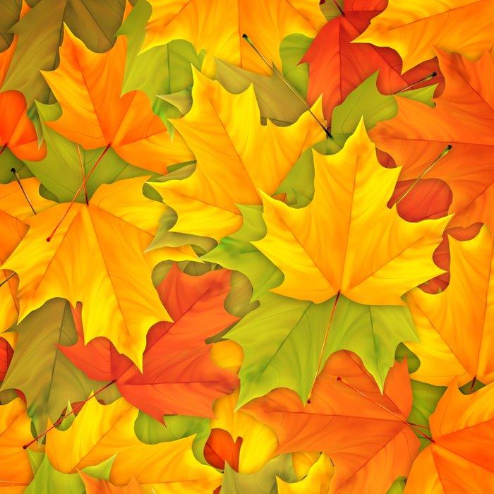 Autumn leaves #9 Comforters