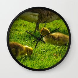 Baby Geese Wall Clock