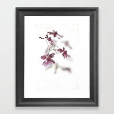Orchid Dreams Framed Art Print