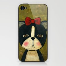 Portrait Of A Boston Terrier Dog iPhone & iPod Skin