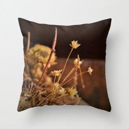 Straw Flower Throw Pillow