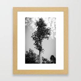 Landmark Framed Art Print