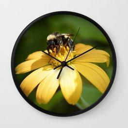 Bumblebee Gathering Pollen from Zinnia Wall Clock