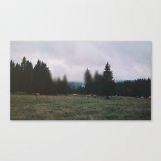 Landscape Twist Canvas Print