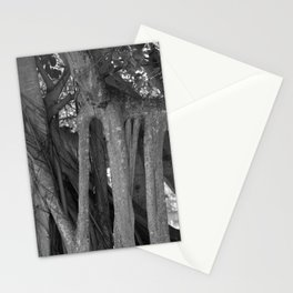 Banyan Tree  Stationery Cards