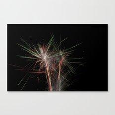 Fireworks make you wanna... (4) Canvas Print