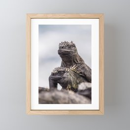Two Marine Iguanas Framed Mini Art Print