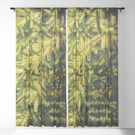 Wattle - Australian Acacia Sheer Curtain