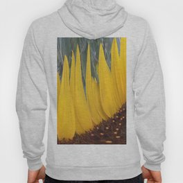 359 - Abstract Flower Landscape Hoody