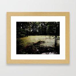 Dark swamp Framed Art Print