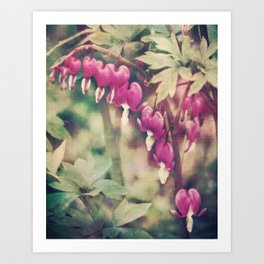 Dancing Bleeding Hearts Art Print