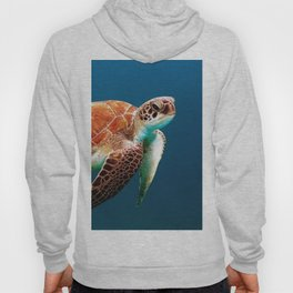 Turtley Hoody