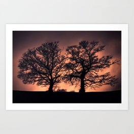 Ethereal Trees  Art Print