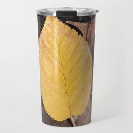 Changing Leaves Travel Mug