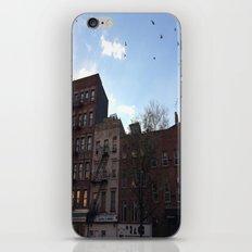 East Village iPhone & iPod Skin