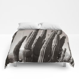 Tucson by Heidi Appel Comforters