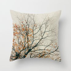 when autumn comes to it's end Throw Pillow