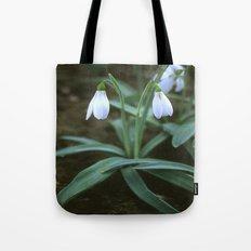 Crimean Snowdrop Closeup  Tote Bag