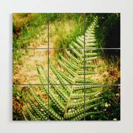 Green Fern Wood Wall Art