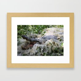 Thirteen Foot Alligator  Framed Art Print