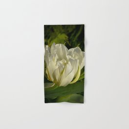 Double White Tulip by Teresa Thompson Hand & Bath Towel