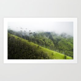 Valle de la Cocora Art Print
