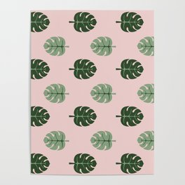 Tropical leaves Monstera deliciosa green and pink #monstera #tropical #leaves #floral #homedecor Poster
