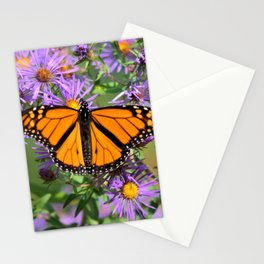 Monarch Butterfly on Wild Asters (square) Stationery Cards
