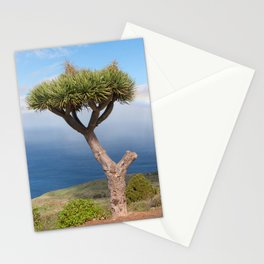 Canary Islands dragon tree Stationery Cards