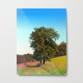 Old tree, vibrant surroundings Metal Print