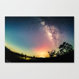 Gazing into the Unknown Canvas Print
