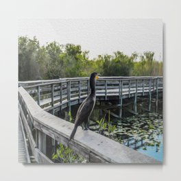 The Cormorant Metal Print