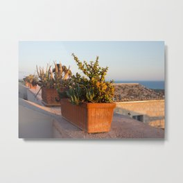 Flowerpots on the terrace Metal Print