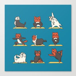 Yorkshire Terrier Yoga Canvas Print