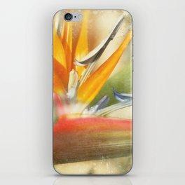 Bird of Paradise - Strelitzea reginae - Tropical Flowers of Hawaii iPhone Skin