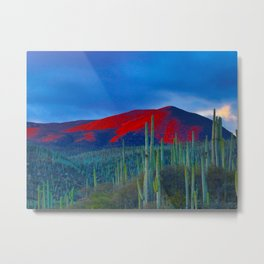 Green Cactus Field In The Desert With Red Mountains Blue Grey Sky Landscape Photography Metal Print
