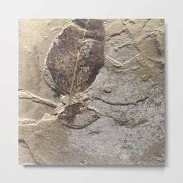 Nature - Leaf of our Past Metal Print